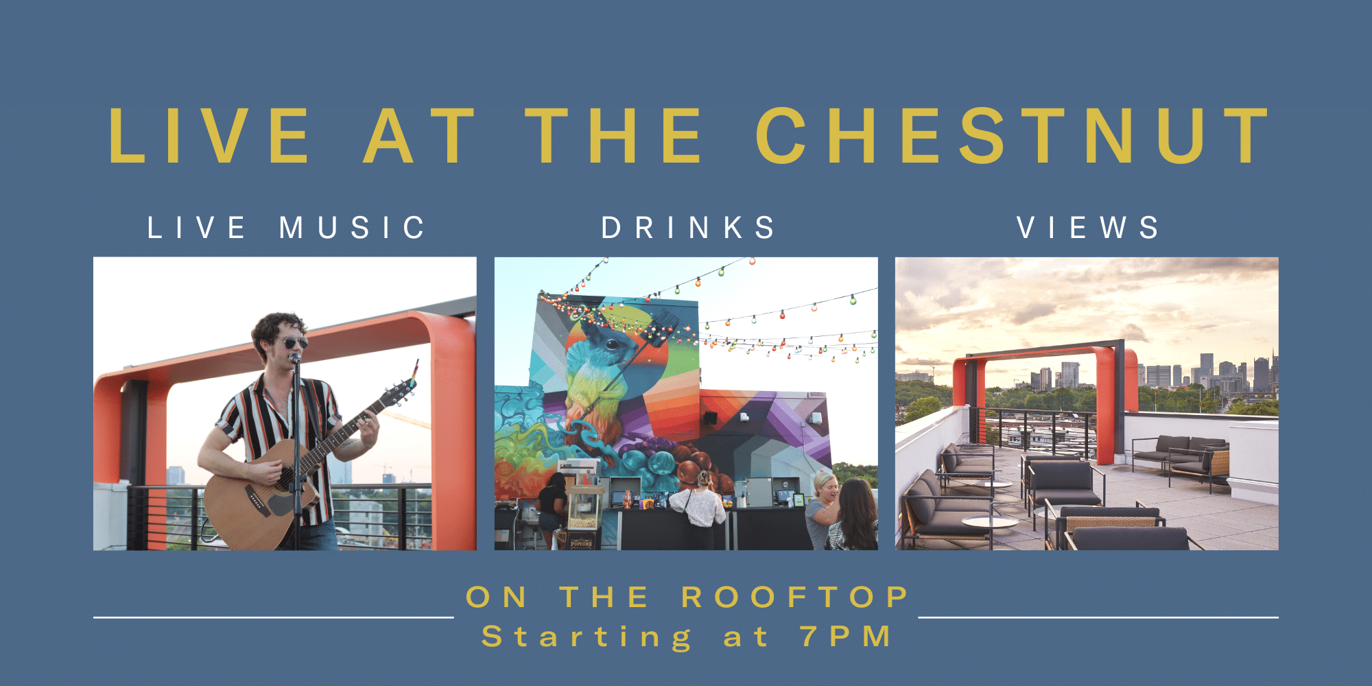 Live At The Chesnut- BentoLiving Chestnut Hill's Rooftop Concert Series